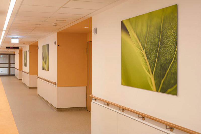 Bildausstattung für Krankenhaus großer Flur